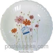 Тарелка Luminarc обеденная Country Flower G 1492 25 см фото