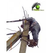 Установка опор (столбов) линий электропередач ЛЭП фото