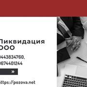 Ликвидация ООО в Киеве. Услуги по экспрес-ликвидац фото