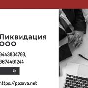 Услуги по ликвидации предприятий в Днепре. Экспрес фото