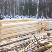 Срубы бань и домов из осины. фото