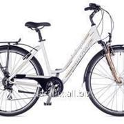 Велосипед Dynasty 2016 фото