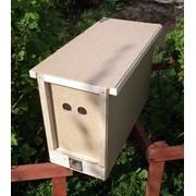 Пчелопакеты карпатской породы фото
