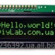 Символьний дисплей LCD 1602 HD44780 зелені символи, чорний фон фото