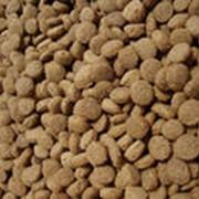Сухие корма для животных фото
