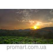 Фотокартина Ранок в горах. Північний Кавказ код КН-102 фото