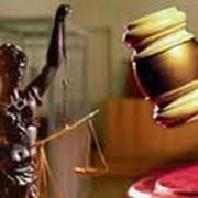 Судебное представительство. Арбитраж фото