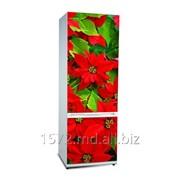 Фасад для холодильников Snaige Артикул: 031 фото