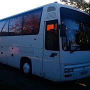 заказ автобуса на 40-50 мест  фото