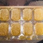 """Рамка для сотового мёда """"Панский сот 230мм"""" фото"""