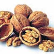 Орехи грецкие, грецкие орехи, орехи фото