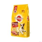 PEDIGREE® для взрослых собак маленьких пород, полнорационный корм с говядиной фото