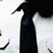 Страхование грузов, Страхование и охрана грузов (Украина, Киев, Днепропетровск, Харьков, Донецк, Одесса, Львов) фото