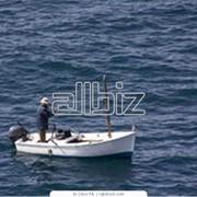 Рыбная ловля и подводная охота фото
