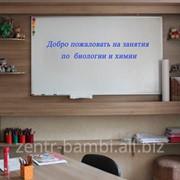 Подготовка к ЕНТ и ЕГЭ по биологии и химии фото