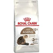 Royal Canin 4кг Ageing 12+ Сухой корм для взрослых кошек старше 12 лет фото