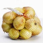 Сетка экструзионная для автоматической, полуавтоматической и ручной упаковки фруктов и овощей Марка Ф3 фото
