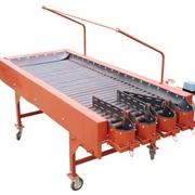 Инспекционный стол 1000х2500 мм для картофеля фото