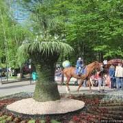 Школьная экскурсия парки Ставрополя фото