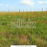Аренда и продажа земельных участков фото