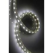 Светодиодная LED лента ЭКОНОМ 60 диодов на метр двойной герметик, двусторонняя защита. фото