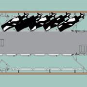 Оборудование доильное (Доильные залы Елочка, Паралель, Карусель) фото