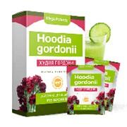 Худия Гордони (Hoodia Gordonii) для похудения фото