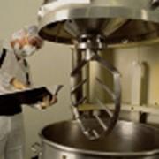Дератизация помещения производственного против грызунов фото