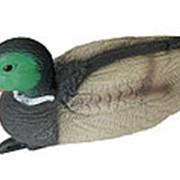 Чучело кряквы плавающей (селезень) 12 шт./уп. фото