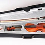 B16-4/4 Скрипка в футляре со смычком Strunal, Чехия фото