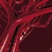Профилактика лечение рака фото