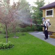 Опрыскивание сада фото