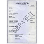 Сертификат Евро 4 фото
