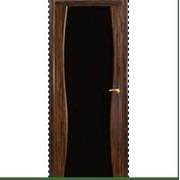 Двери межкомнатные с черной вставкой фото