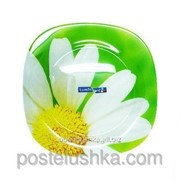 Тарелка Luminarc обеденная carina paquerette green/280 мм артикул g0086 фото
