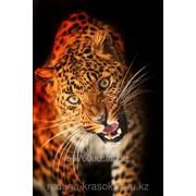 Картина стразами Леопард 40х60 см фото