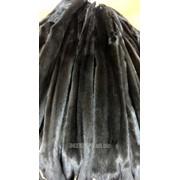 Черная натуральная норка (сканблэк/scanblack), самочки. Размер: 3 (50-54 см.) фото