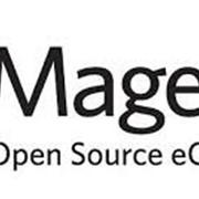Круглосуточная поддержка интернет-магазина на платформе Magento фото