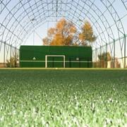 Строительство футбольных стадионов и футбольных полей фото