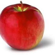 Яблоки кортланд фото