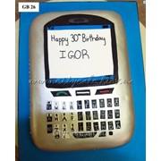 Торт тематический №0042 код товара: 3-0042 фото