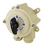 Пакетный выключатель ПВ3-40 3П 40А 220В IP56 TDM фото