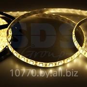 LED лента герметичная в силиконе, ширина 10 мм, IP65, SMD 5050, 60 диодов/метр, 12V, цвет светодиодов теплый белый фото