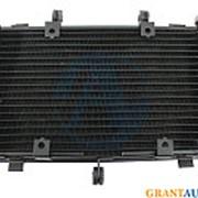 Радиатор охлаждения Yamaha FZ600 2004-2010 фото