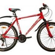 Велосипед Cronus Elite 1.0 фото