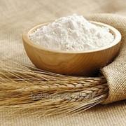 Глютен (клейковина пшеничная) фото