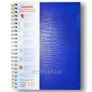 Тетрадь A4 с цветными разделителями, 100 листов, на боковой спирали, клетка KB43100 фото