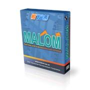 Разработка программного обеспечения систем учёта весоизмерений MALOM фото