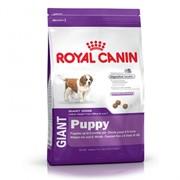 Корм для собак Royal Canin Giant Puppy 15 кг фото