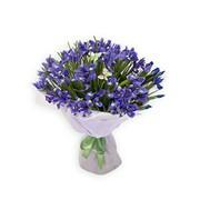 Букет цветов Свежие фото